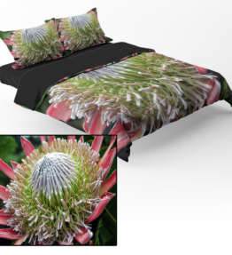 Bedding | Protea 1