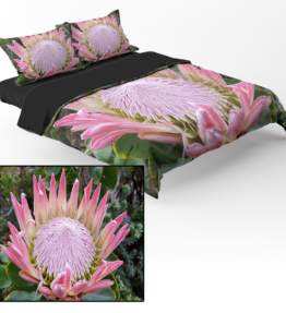 Bedding | Protea 3